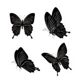 Uppsättning av realistiska färgrika fjärilar som isoleras för vår Royaltyfria Foton