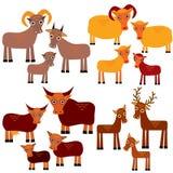 Uppsättning av roliga djur med gröngölingar Getter får, kor, hjortar på en vit bakgrund vektor Royaltyfri Bild