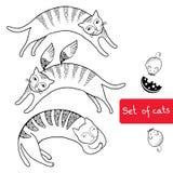 Uppsättning av roliga katter för din design Stock Illustrationer