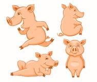Uppsättning av rosa svin vektor illustrationer