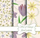 Uppsättning av sömlös blom- modelltappning royaltyfri illustrationer
