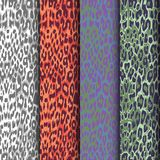 Uppsättning av sömlösa leopardmodeller royaltyfri illustrationer