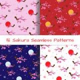 Uppsättning av sömlösa modeller för vår som blommar Sakura Arkivfoto