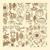 Uppsättning av sömlösa modeller av handgjorda höstbeståndsdelar av naturen Beståndsdelar av designen för tacksägelse och festmålt stock illustrationer