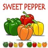 Uppsättning av söt peppar för fyra färg Royaltyfria Bilder