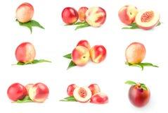 Uppsättning av saftiga mogna persikor som isoleras på ett vitt bakgrundsutklipp Arkivfoton