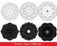 Uppsättning av samlingen för lotusblommamandalasol Royaltyfri Foto