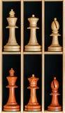 Uppsättning av schackstycken i en träask Royaltyfria Foton