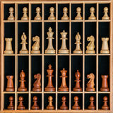 Uppsättning av schackstycken i en träask Royaltyfri Fotografi