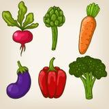 Uppsättning av sex gullig hand drog grönsaker Fotografering för Bildbyråer