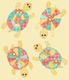 Uppsättning av sköldpaddor. Royaltyfri Fotografi