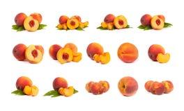 Uppsättning av smakliga saftiga persikor med skivor på en vit bakgrund royaltyfria foton