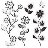 Uppsättning av svartvit flowers-1 Arkivbild