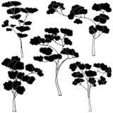 Uppsättning av svartvita träd Royaltyfri Bild