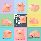 Uppsättning av svinfamiljen Arkivbilder