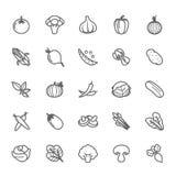 Uppsättning av symbolen för översiktsslaglängdgrönsak royaltyfri illustrationer