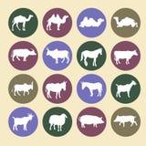 Uppsättning av symboler för lantgårddjur stock illustrationer