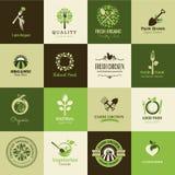 Uppsättning av symboler för organisk mat och restauranger vektor illustrationer