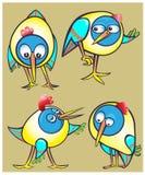 Uppsättning av symboler för tecknad filmklotterfåglar Fotografering för Bildbyråer