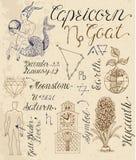 Uppsättning av symboler för zodiakteckenStenbocken eller get royaltyfri illustrationer