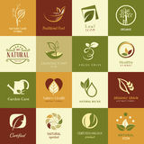 Uppsättning av symboler och symboler för naturhälsa och organiskt Arkivfoto