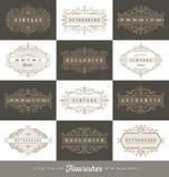 Uppsättning av tappninglogomallen med calligraphic ramar för krusidullar Royaltyfria Bilder