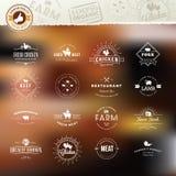 Uppsättning av tappningstilbeståndsdelar för etiketter och emblem för kött Fotografering för Bildbyråer