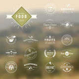 Uppsättning av tappningstilbeståndsdelar för etiketter och emblem för naturlig mat och drink Royaltyfria Bilder