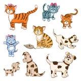 Uppsättning av tecknad filmkatter och hundkapplöpning Arkivbilder