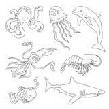 Uppsättning av teckningar av marin- invånare - en haj, tioarmad bläckfisk, fisk, manet, delfin, räka, bläckfisk arkivbilder