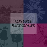 Uppsättning av 4 texturerade bakgrunder Royaltyfri Fotografi