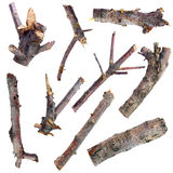 Uppsättning av torra trädfilialer som isoleras på en vit bakgrund Arkivfoton
