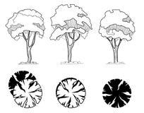 Uppsättning av träd för arkitektoniska teckningar för garnering och för landskap Yttersidasärdrag Bästa sikt direkt stock illustrationer