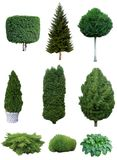 Uppsättning av träd och buskar Royaltyfri Fotografi