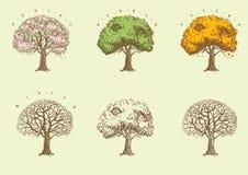 Uppsättning av träd på gravyrstil. Arkivfoton