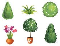 Uppsättning av trädgårds- växter Fotografering för Bildbyråer