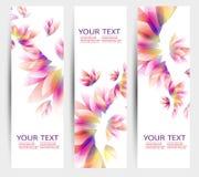 Uppsättning av tre baner, abstrakt titelrader Royaltyfria Foton