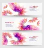 Uppsättning av tre baner, abstrakta titelrader, med färgrika blom- beståndsdelar royaltyfri illustrationer