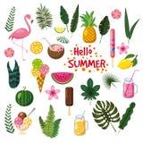 Uppsättning av tropiska sidor, gulliga sommarsymboler, glass, flamingofågeln och tropiska blommor, tecknad filmstil som isoleras Royaltyfri Foto
