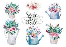 Uppsättning av vattenfärgbuketter Fjädra blommor i kruka lantligt Royaltyfria Bilder
