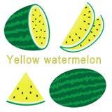 Uppsättning av vattenmelon med tecknet, lägenhetstil Arkivfoto