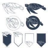 Uppsättning av vektorbilder med havssköldpaddan Fotografering för Bildbyråer