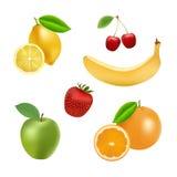 Uppsättning av vektorfrukter och bär Fotografering för Bildbyråer