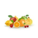 Uppsättning av vektorfrukter och bär Arkivfoton