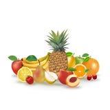 Uppsättning av vektorfrukter och bär Royaltyfria Bilder