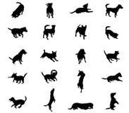 Uppsättning av vektorhundkapplöpningkonturer Arkivfoton