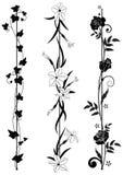 Uppsättning av vertikala blom- avdelare Arkivbild
