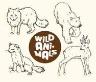 Uppsättning av vilda djur: räven, björnen, hermelinet och fiskromen lurar Arkivbild
