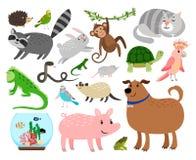 Uppsättning för älsklings- djur för tecknad film royaltyfri illustrationer