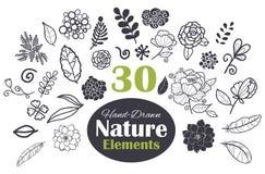 Uppsättning för beståndsdelar 30 för vektor svart vit naturlig Arkivbilder